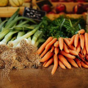 Veggie Diet Pros and Cons